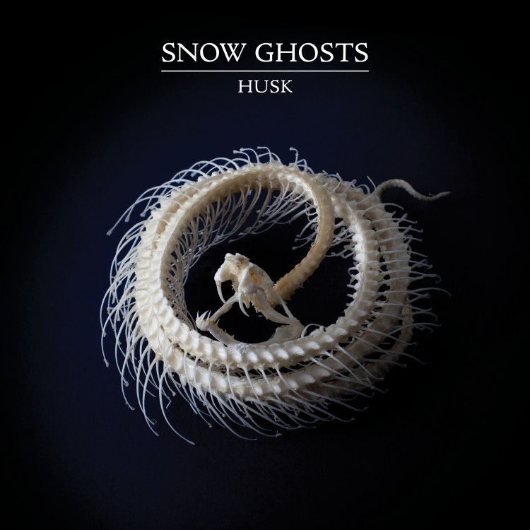 Snow Ghosts - Limited bespoke clear vinyl